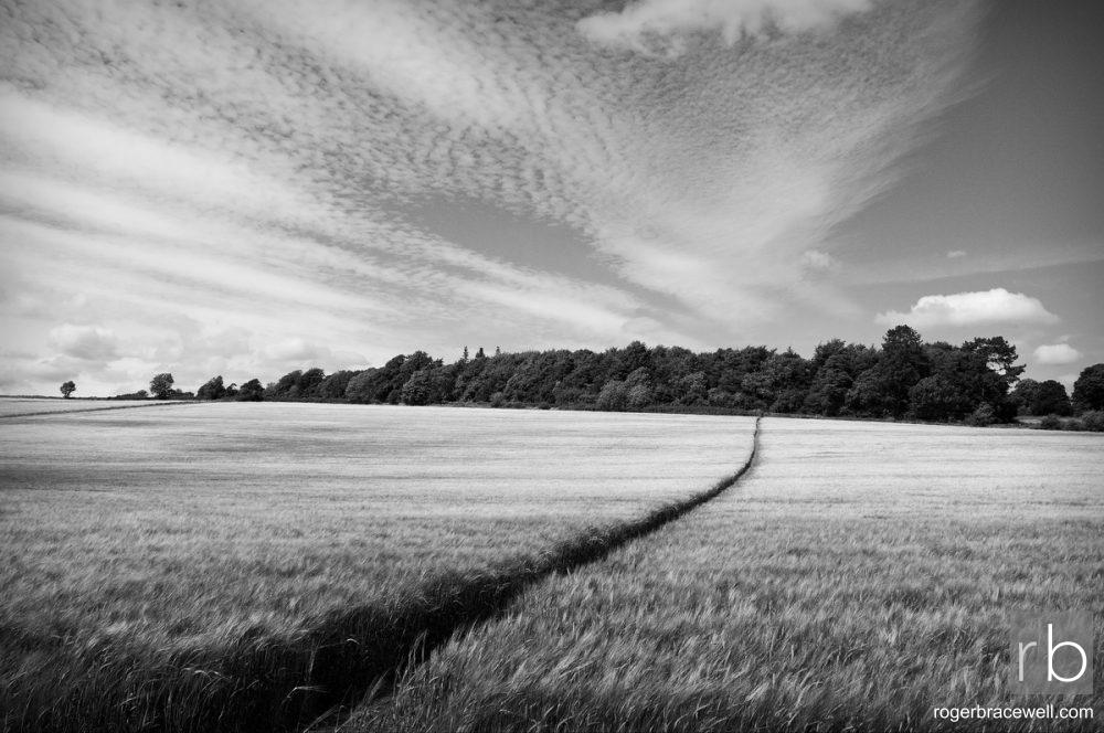 Sapperton | Gloucestershire
